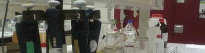 biomedische wetenschappen